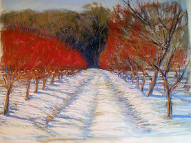 March Orchard Peter Erickson Entry #1.jp