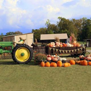 fall tractor.jpg