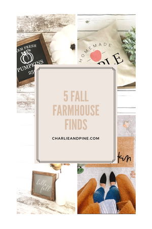 Five Fall Farmhouse Finds!