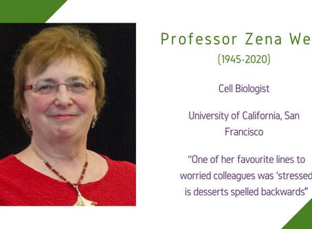 Life Sciences Awardee 2020: Professor Zena Werb