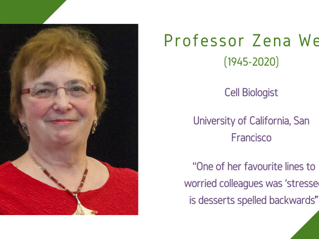 Life Sciences Awardee 2020: Professor Zena Werb