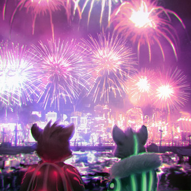 Watching the Fireworks