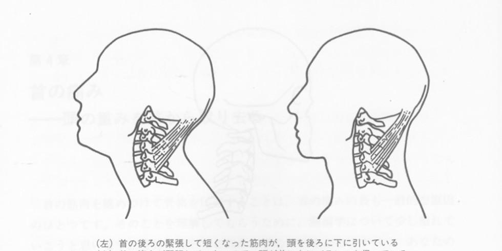 頭の位置の確認会