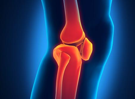 情報リテラシーを高めて。たとえば膝について。