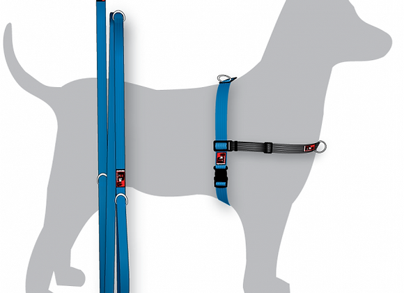 Harness & Leash Pack