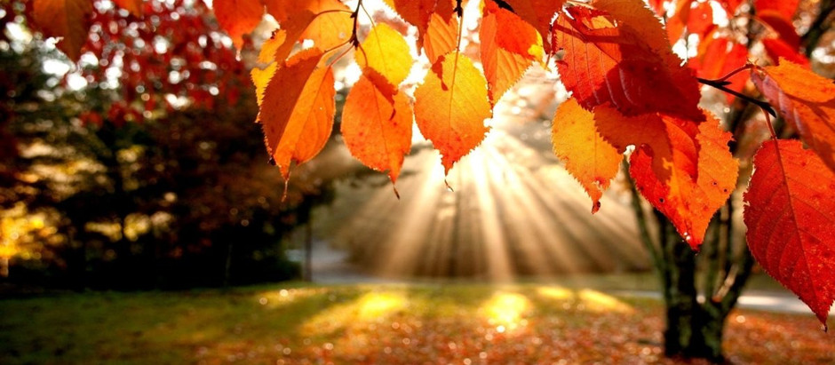Preparing and Celebrating the Autumn Equinox
