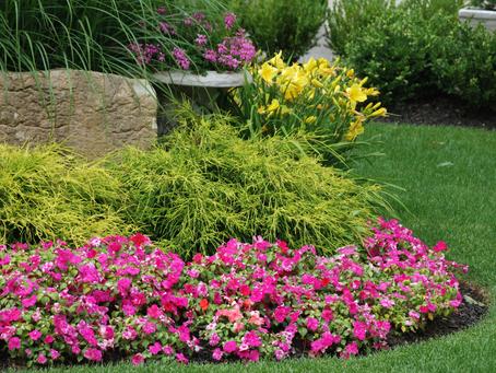 10 Ways to Design an Attractive Garden