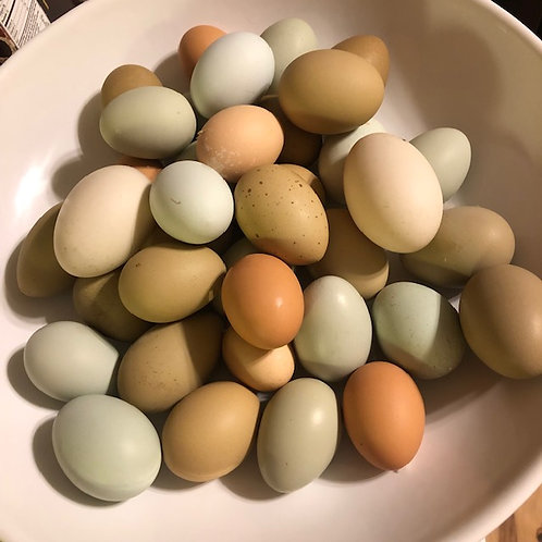 Farm Fresh Chicken and Duck Egg Mix