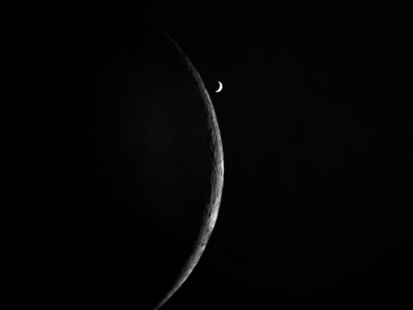 Occultation of Venus by the Moon