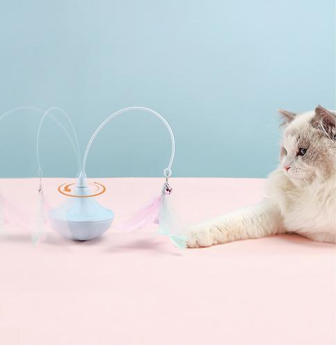 Rotating Cat Teaser