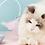 Thumbnail: Rotating Cat Teaser