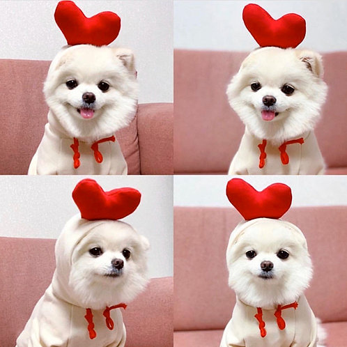 Heart Dog Hoodie