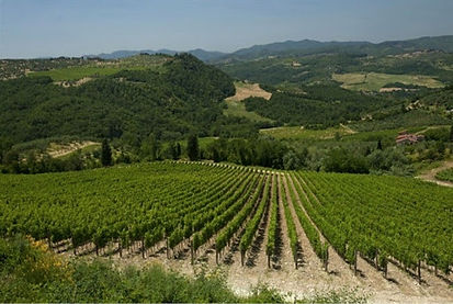 Cantina Caparra & Siciliani.jpg