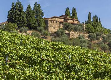 cantina-quercia-al-poggio.jpg