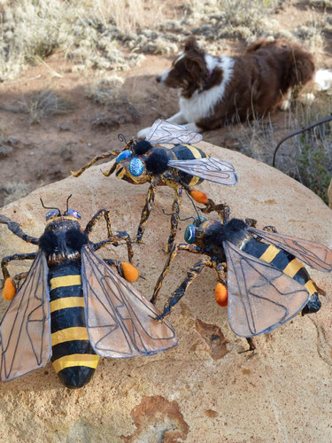 bees with Juno.jpg