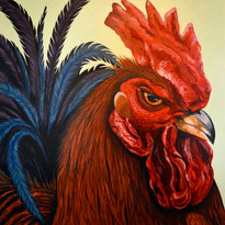 Rooster 18_ x 18_ SOLD