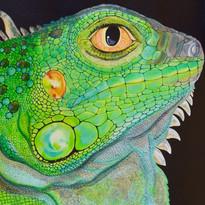 Iguana 30_ x 24_.jpg