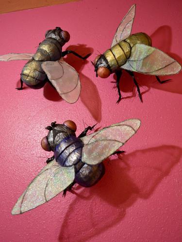 Flies on the Wall.jpg