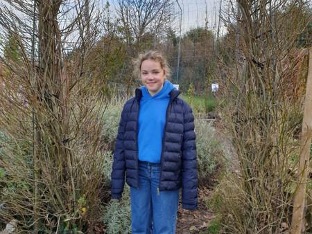 Our November Gardening