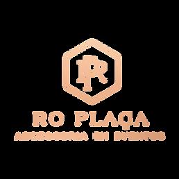 Rodrigo_Plaça_-_logotipo_-_rose.png