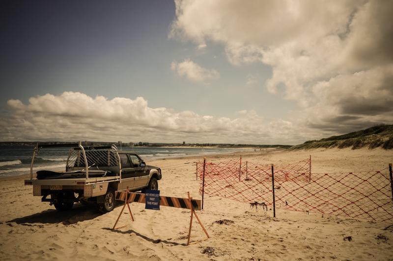 Cronulla Beach