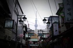 Sky Tree from Asakusa
