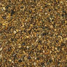 Golden Pea 2-5mm