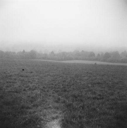 Claudia Oppelt - Morning Mist.jpg
