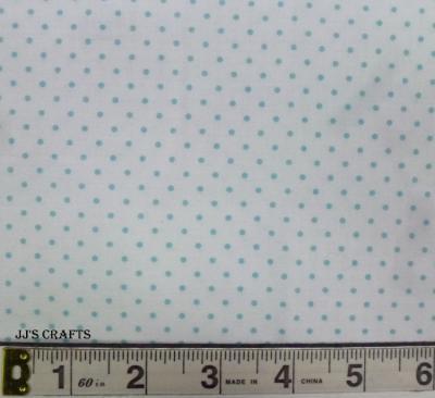 Swiss Dot Aqua/white