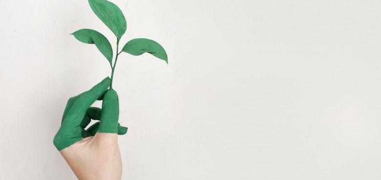 Campaña Greenwashing de Two Sides.jpg