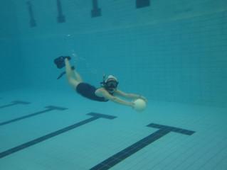 Normale treningstider ut 2014