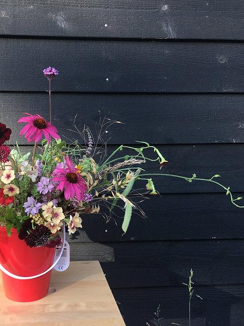 1 off Bucket of fresh cut organic British flowers