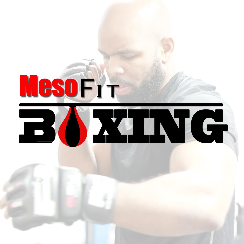 MesoFit Boxing