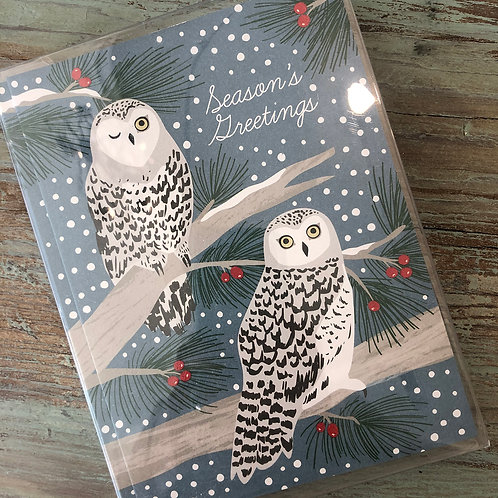 Snowy Owls Boxed Cards