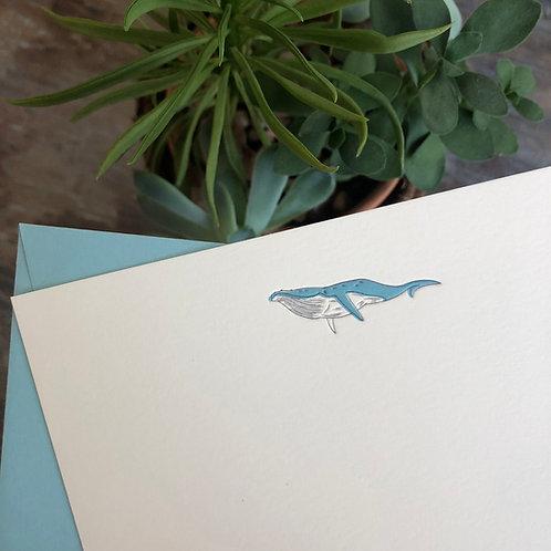Whale Notecard