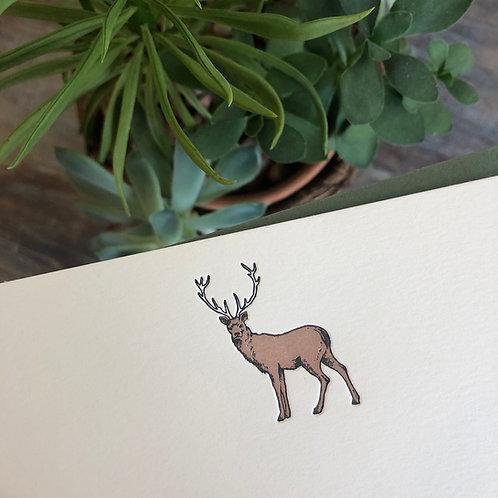 Deer Notecard