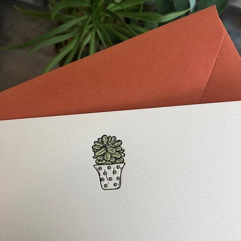 Succulent 1 Notecard