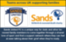 sands advert.png