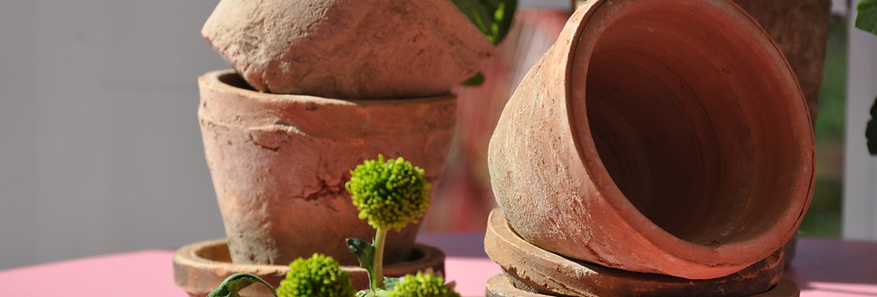 Vintage style mossed pot & saucer
