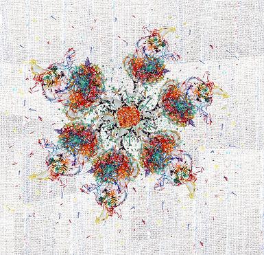 donldwarpedflower.jpg