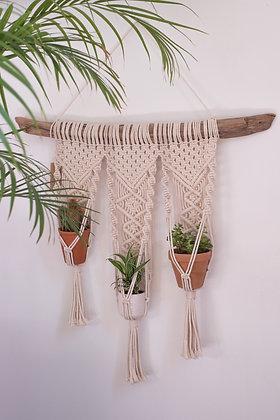 suspension macramé triple bois flotté plantes vertes