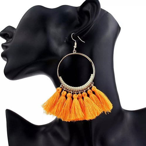 """""""Tassel Hook Earrings"""""""