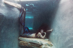Mermaid Charlotte of the Circus Siren Pod
