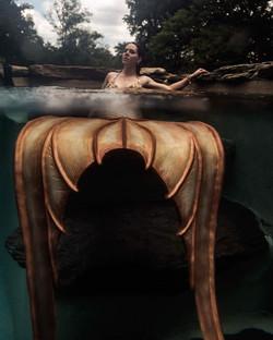 The Circus Siren Pod