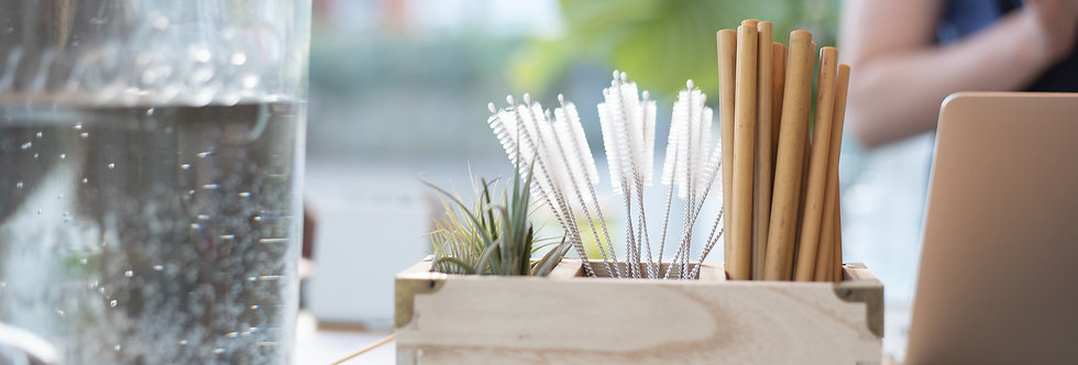 Bamboo Straw with Cleaner