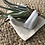 Thumbnail: Ceramic Hand Air Plant Holder (with Plant)