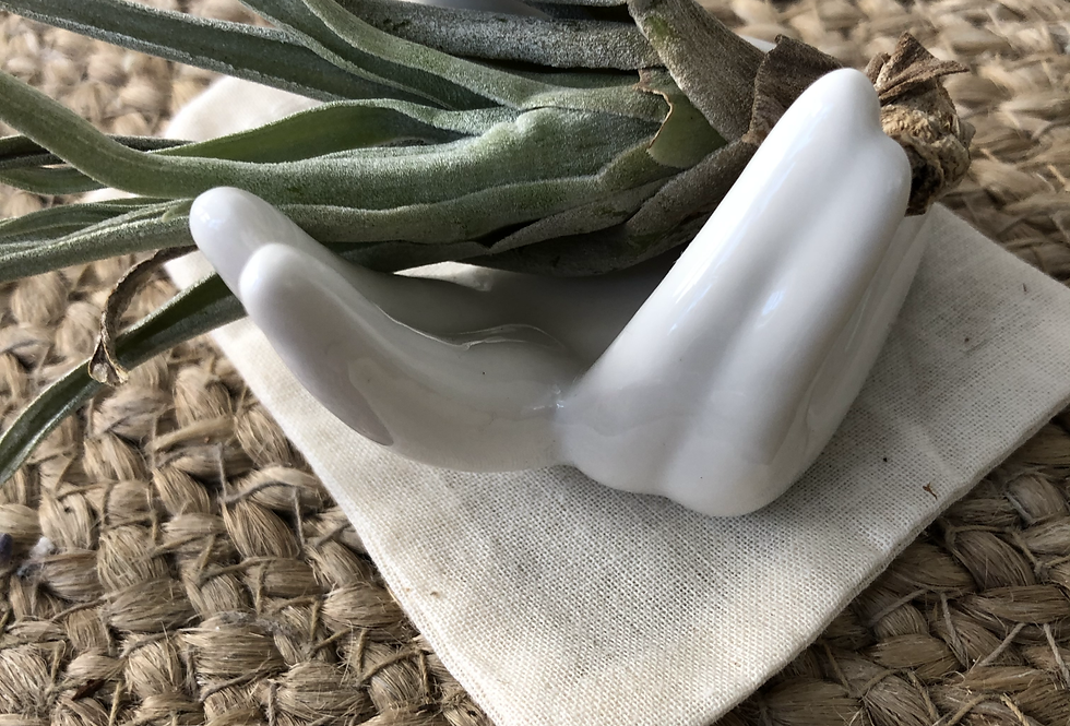 Ceramic Hand Air Plant Holder (with Plant)