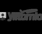 Ylitornio logo