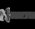 NEVE logo