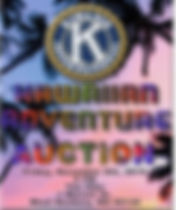 Hawaiian Adventure Auction.jpg